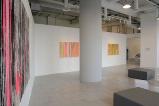 Paolo BINI   BEHIND THE VISIBLE, installation view