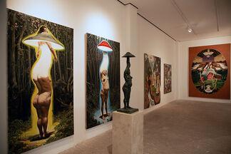 Daniel Lezama: Crisol, installation view