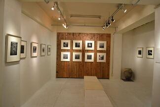 """The Beautiful Mermaid -the life of woman divers-"" Eishin Osaki, installation view"