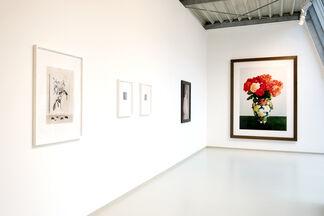Fleurs, installation view