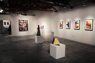 Reconstructed., installation view