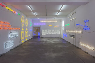 "Joseph Kosuth, ""Insomnia: assorted, illuminated, fixed."", installation view"