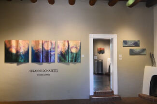 """""""Transitions"""" by Suzanne Donazetti, installation view"""