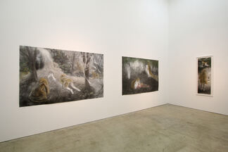 Eyes & Curiosity―anomaly, installation view