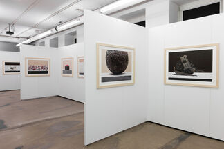 Paweł Żak, Core Curriculum and Other Still Lifes, installation view