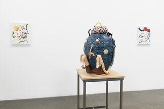 "Joakim Ojanen - ""Year of the Dog"", installation view"