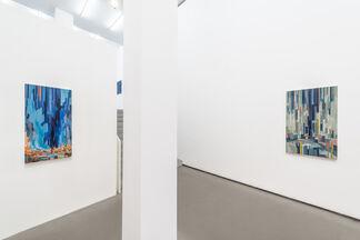 David Schnell: vert, installation view