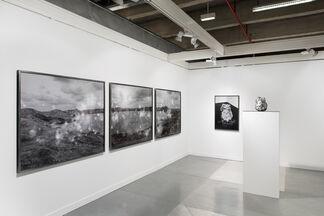 DITTRICH & SCHLECHTRIEM at Officielle 2015, installation view