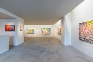 José Parlá's 《Entropies》, installation view