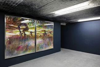Martin Dammann - ABSTIEG, installation view