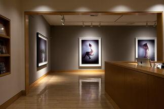 Richard Learoyd, installation view