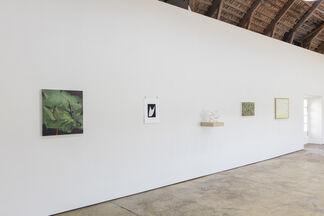 Stilla liv / Still Life, installation view