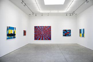 Pixel Fields, installation view