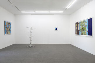 Nepenthes by İskender Yediler, installation view