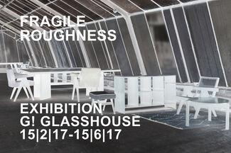 Fragile Roughness, installation view