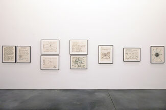 Parrish Perspectives - Joe Zucker: Life and Times of an Orb Weaver, installation view