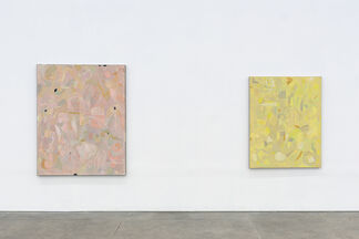 Clare Grill - Touch'd Lustre, installation view