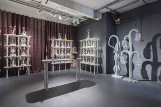 Dermapoliesis by Matteo Cibic, installation view
