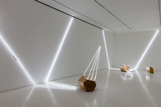 Arboreal, installation view
