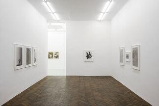 Birgit Jürgenssen, installation view