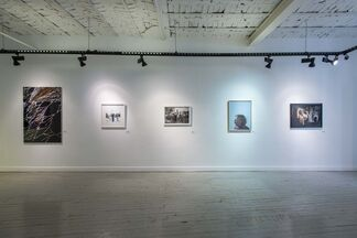New Photography, installation view