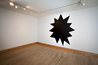 Sol LeWitt & Liz Deschenes, installation view