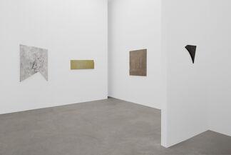 Mikkel Carl, installation view