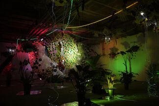 Byungchan Lee: The Camouflaged Dried Pollack, installation view