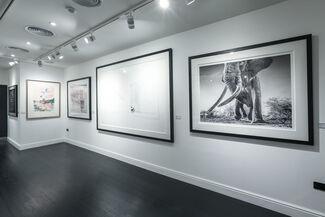 Summer Contemporary - Westbourne Grove, installation view