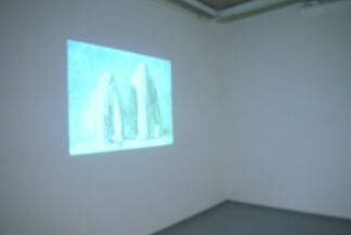 James Rielly Thinking things through, installation view