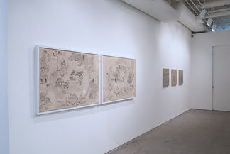 Abstract Enlightenment, installation view