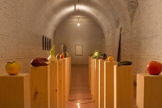 Anamericana, installation view