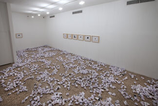 Lost Control, installation view