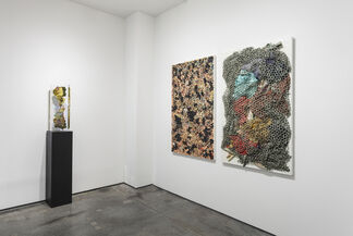 Descendants, installation view
