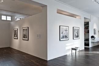 ROGER BALLEN: Asylum of the Birds, installation view