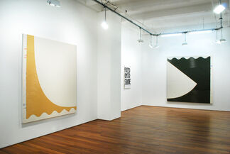 SHAAN SYED - One Minus One, installation view