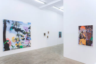 'Blast Over' curated by Christian Rex Van Minnen, installation view
