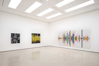 Sarah Morris: Your Words Become Mine, installation view