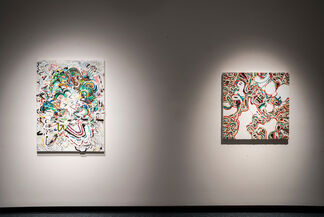 I Used To Be A Rainbow • Earl McBride, installation view
