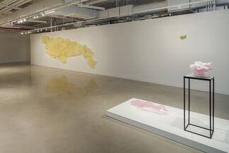 Sarah Briland: Problematica, installation view