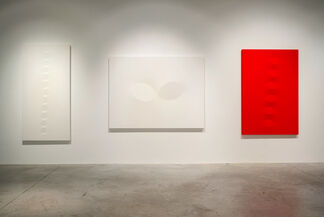 Project Room: Turi Simeti, installation view