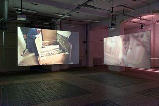 Anticipation 1: Petrit Halilaj, July 14?, installation view