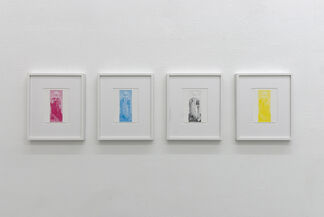 Michael Riedel, installation view