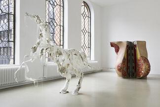 Raphaela Vogel: Ultranackt, installation view