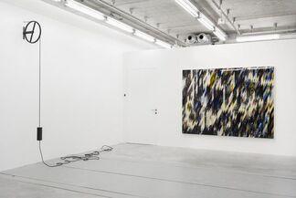 Mathias Bitzer, installation view