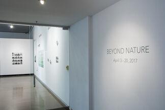 BEYOND NATURE, installation view