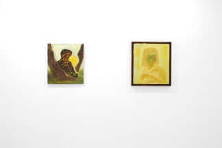Rx For Viewing - Grant Foster and Jesse Wine, installation view