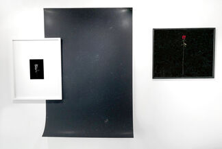 David Benthal: Stars & Roses, installation view