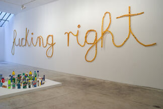 Jaime Pitarch: Beautiful Unglittering Things, installation view