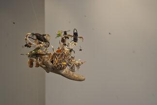 Tessa Farmer: Control Over Nature, installation view